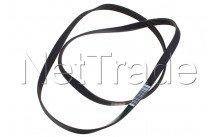 Universal - Correa de transmisión poly-v 1239 pj5 elástica - 481235818215